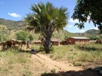 Een kleine nederzetting in de buurt van Eva Demaya